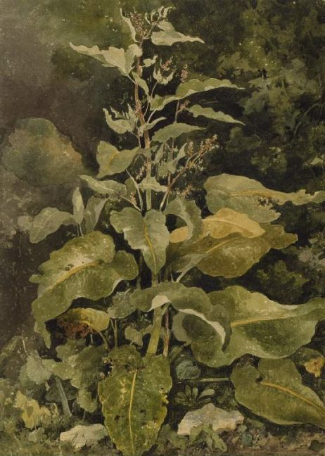 painting by the famous Scottish artist Patrick Nasmyth